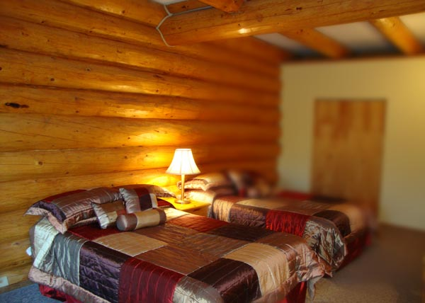 Helmcken Falls Lodge log room